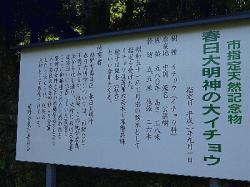 re.kasugaityou4.jpg