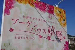 re.bougainhouseureshino1.jpg
