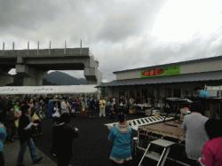 new_nogiku_3.jpg