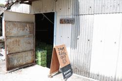 re.yoshida2018-5.jpg