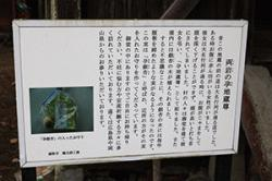 re.haramizizo201811-7.jpg