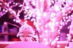 re.yoshidayasakura201812-1.jpg