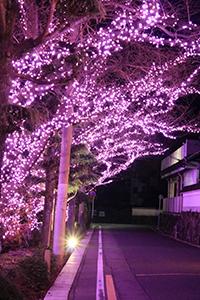 re.yoshidayasakura201812-2.jpg
