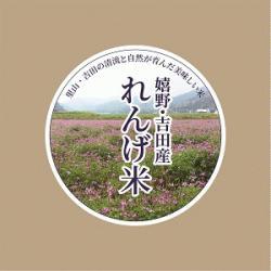 re.yoshidarengemai1.jpg