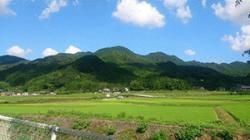 re.yoshidanatsumatsuri201908-5.jpg