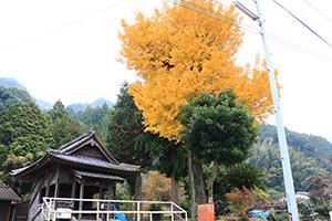 http://www.u-genki.jp/re.haramizizo201811.jpg