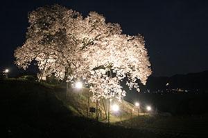 http://www.u-genki.jp/re.yoshida2018-9.jpg