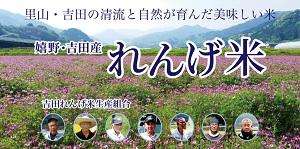 http://www.u-genki.jp/re.yoshidarengemai2.jpg