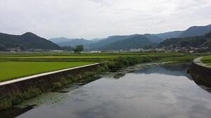 http://www.u-genki.jp/re.yoshidarengemai6.jpg