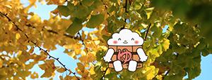 http://www.u-genki.jp/re.yuttura201812.jpg