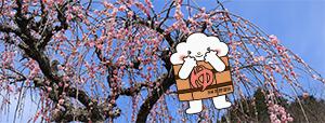 http://www.u-genki.jp/re.yuttura201903.jpg